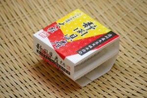 2009静岡1